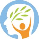 DSM-5 حرفه ای (دی اس ام 5)