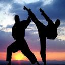 تمرینات و تکنیک های هنرهای رزمی