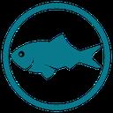 ماهی ( بیماریها و نژادها )