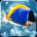 Aquarium Free