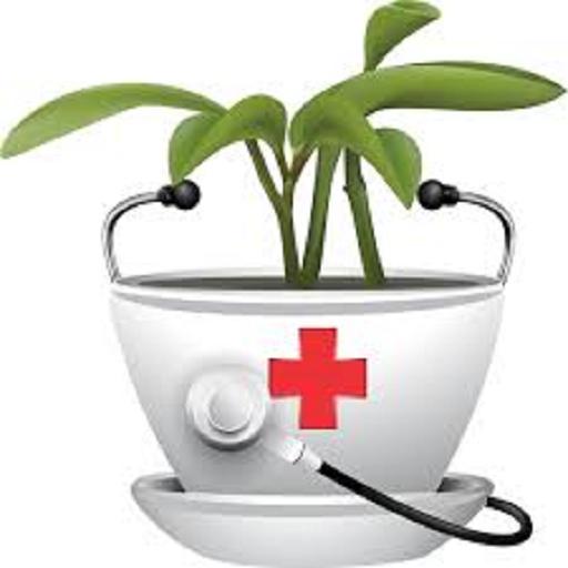 گیاه درمانی 1