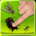 تارو مار حشرات