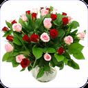 نگه داری از گل ها