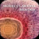 زیست شناسی مولکولی