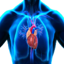 Heart&Lung reference