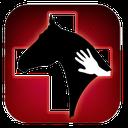اسب ( بیماریها ، پرورش و نژادها )