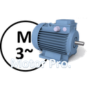 Electric Motor PRO