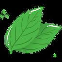 گیاه تراپی