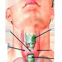 بیماری های غدد
