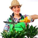 کاشت و نگهداری گل و گیاه