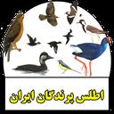اطلس پرندگان ایران