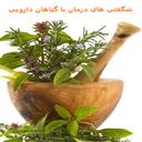شگفتی های درمان با گیاهان دارویی
