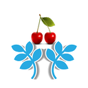 خواص میوه ها و گیاهان دارویی