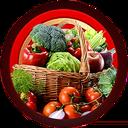 آموزش آنلاین آشپزی دیما