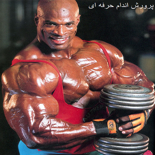 Bodybuilding training (Video)