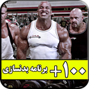 +100 Bodybuilding training program
