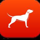 فوت و فن پرورش انواع سگ