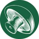 پرورش قارچ(نسخه ویژه)