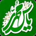 یاس محمدی