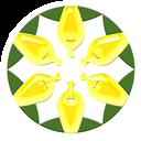 زرین سهام سبز