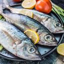 انواع غذا دریایی