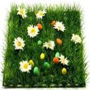 کاشت سبزه شیک و جدید عید95