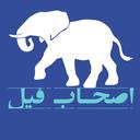 Elephant companions