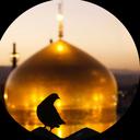 Zaer mashhadreza