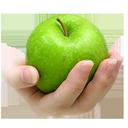 غذاهای مفید و مضر برای بیماریها