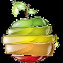 معجزه میوه ها