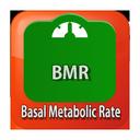 محاسبگر شاخص BMR