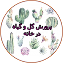 کاشت انواع گل و گیاه