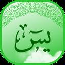 سوره یاسین (صوتی - آفلاین)
