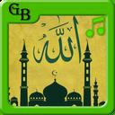 زنگخورهای اسلامی