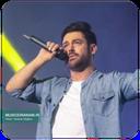 محمدرضا گلزار (آهنگ ها غیر رسمی)