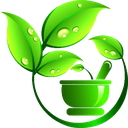 دهکده گیاهان دارویی