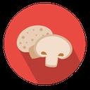 قارچ پرورش بده