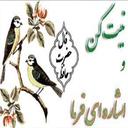 فال حافظ ایرانی{دقیق}