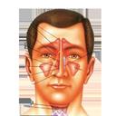 بیماری های حلق و بینی