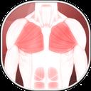 تمرین عضلات سینه ( همراه فیلم )