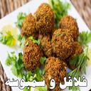 Falafel and Samosa variety