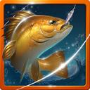 صید حرفه ای انواع ماهی