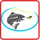 صفر تا صد ماهیگیری