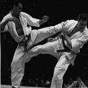 آموزش حرفه ای کاراته