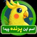 what_bird