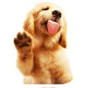 شناخت و تربیت سگ ها