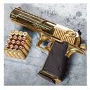 اسلحه شناسی