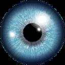 دانستنی های چشم