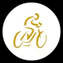 متخصص دوچرخه شو