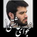 نجوای عاشقی(دکتر حاج میثم مطیعی)